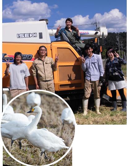 アグリスターオナガのスタッフで記念写真。田んぼで羽を休める白鳥達